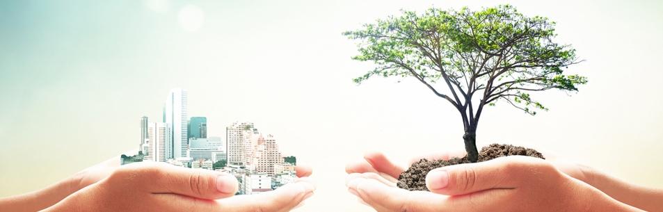 Sistemas Ambientais Sustentáveis